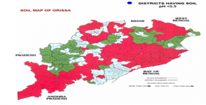 Soils of Odisha